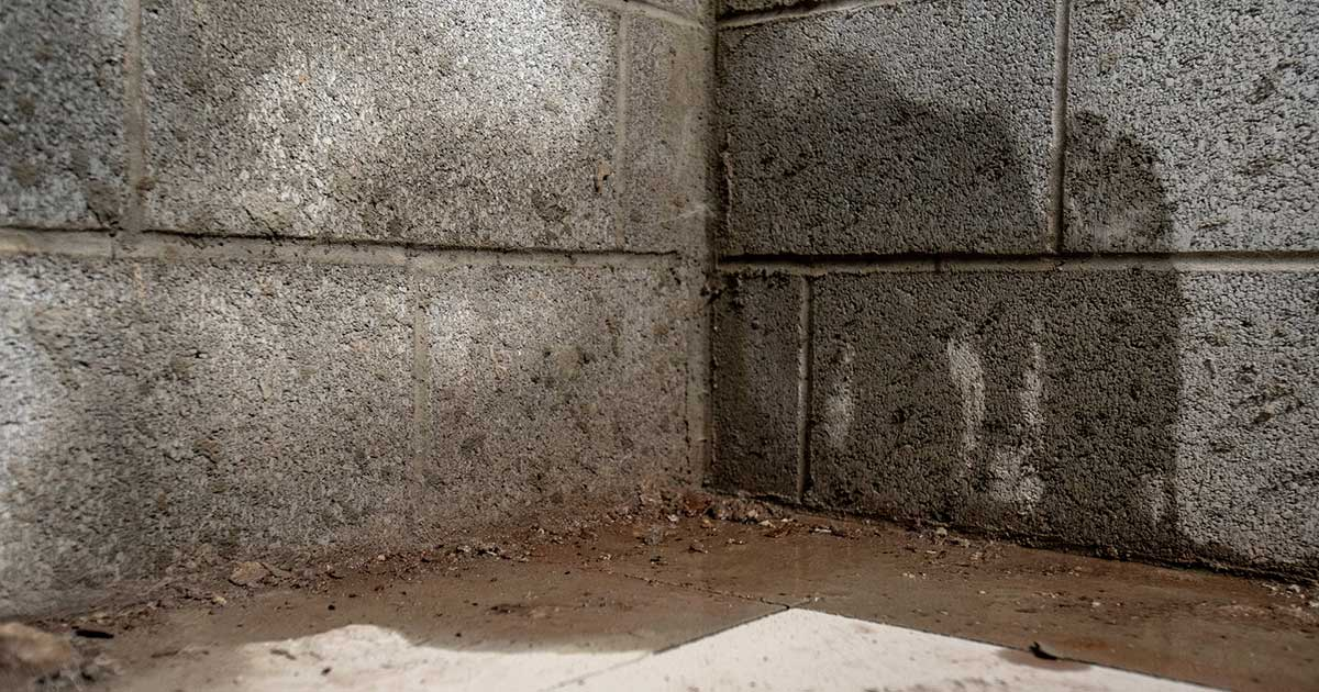 NJ Basement Waterproofing Customer Reviews
